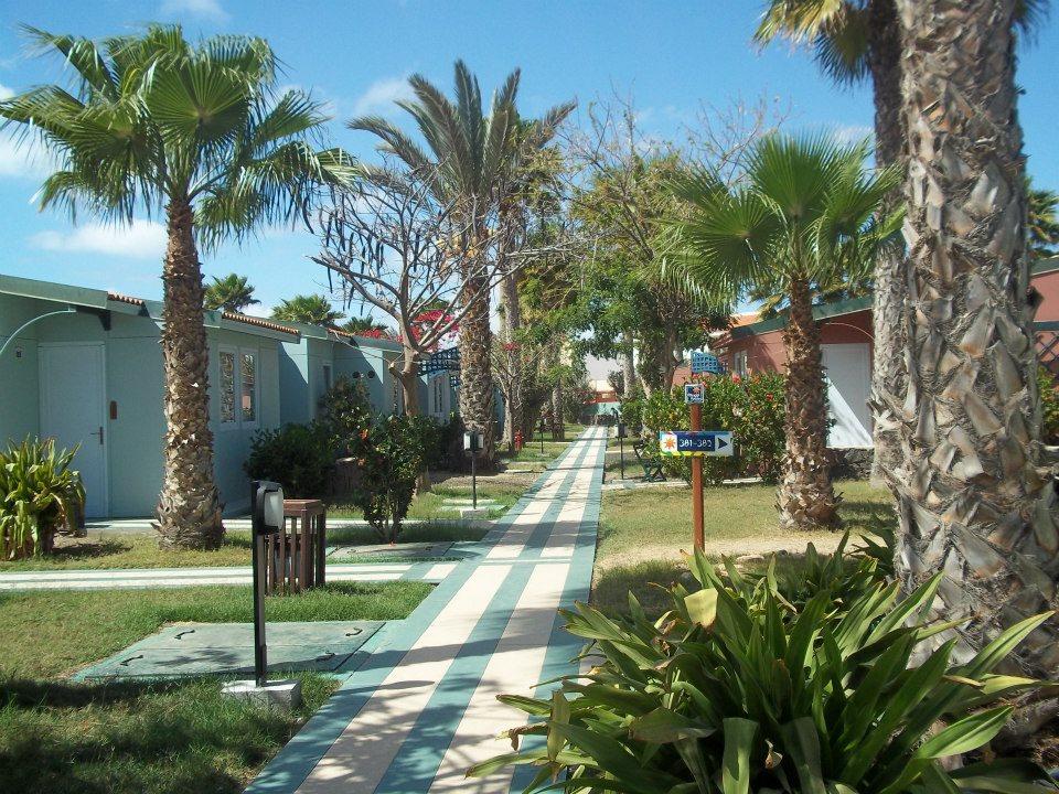 Image sejour/cap vert le de sal hotel farol bravo club jardin